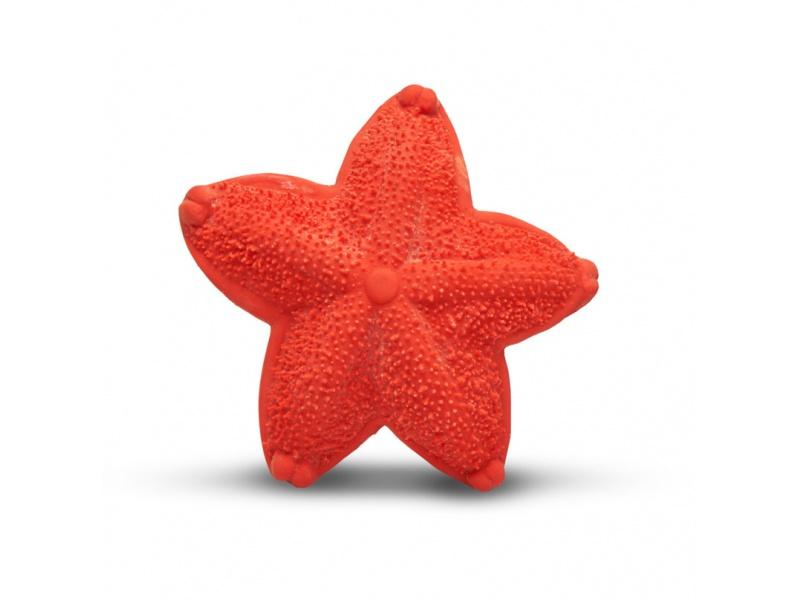 Lanco - Mořská hvězdice