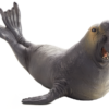 Mojo Animal Planet Slon mořský